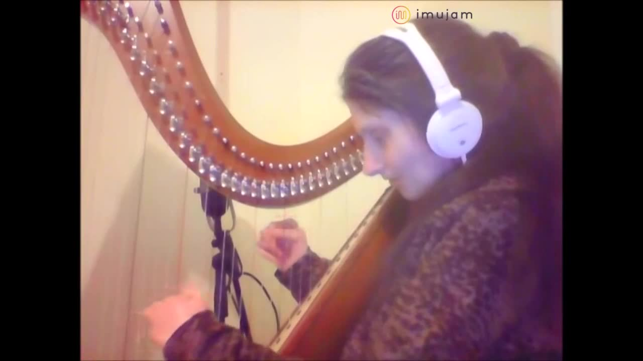 Crawling by linkin park - harp cover